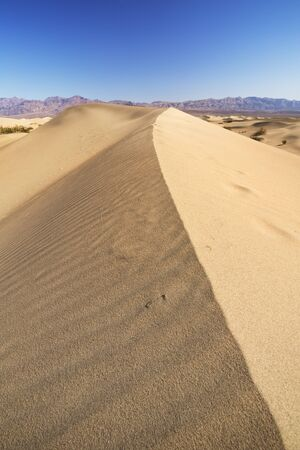 The Mesquite Flat Sand Dunes in Death Valley National Park, California, USA. Stok Fotoğraf - 137304206