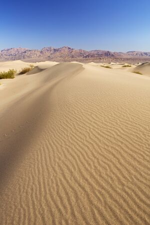 The Mesquite Flat Sand Dunes in Death Valley National Park, California, USA.