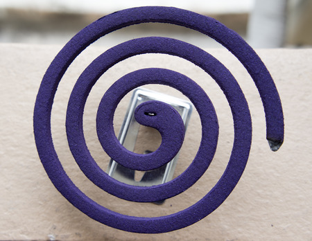 mozzie: Closeup Mosquito coil on topview.