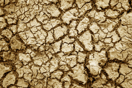 waterless: The cracks texture white and black Stock Photo