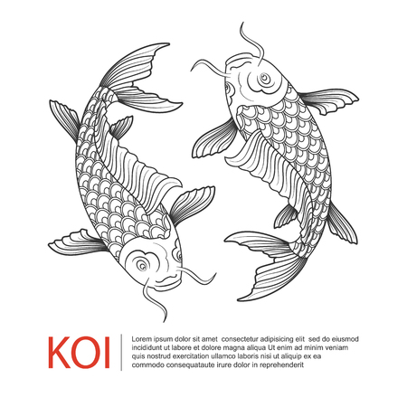 carpa: Mano l�nea trazada arte de carpas Koi, carpa de pescado, vector