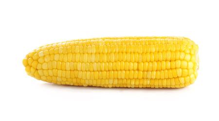 espiga de trigo: mazorcas de ma�z dulce aislados sobre fondo blanco Foto de archivo