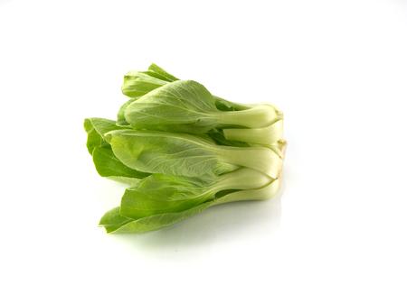 nontoxic: Organic Green lettuce on white background.