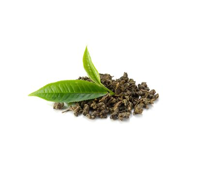 Fresh tea leaves, dried tea on a white background.
