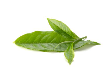 green herbs: Green tea leaves on white background.