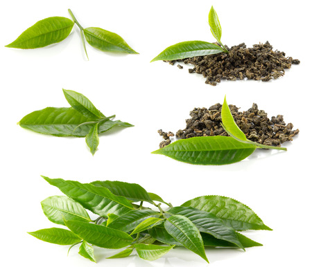 Includes tea leaves and dried tea  on white background. Stock Photo