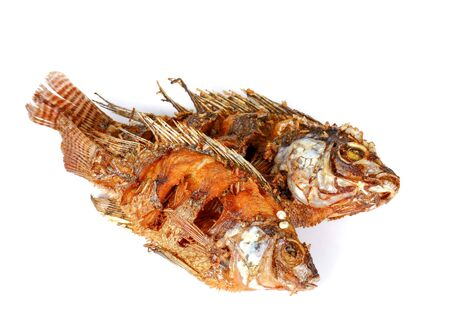 fish fry: Two fish fry isolated on white background.