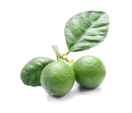 scurvy: Green Lemons isolated on white background.
