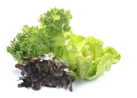 Fresh lettuce salad,Fresh vegetable salad isolated on white background. Stock Photo