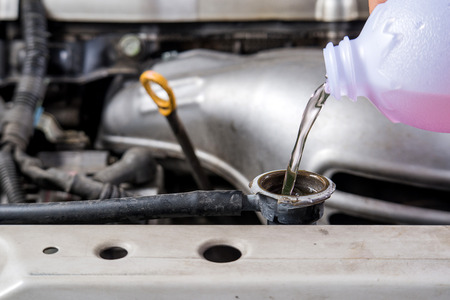 Add water to car  radiator,Check water car radiator. Stock Photo