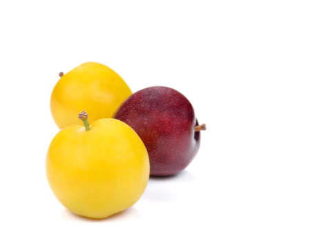 purple leaf plum: Yellow,Red Ripe plum isolated on white background.