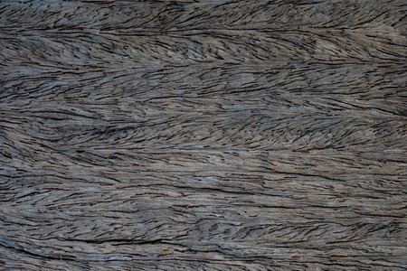 rusty nail: Wood natural surface background with rusty nail.