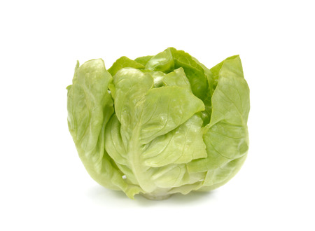 vegetable salad: Fresh lettuce salad,Fresh vegetable salad isolated on white background. Stock Photo