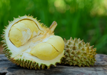 Durian king of fruits for summer place on wooden.
