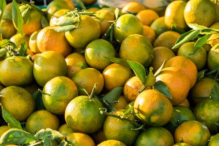 Orange balls put together for sale in market. Stock Photo
