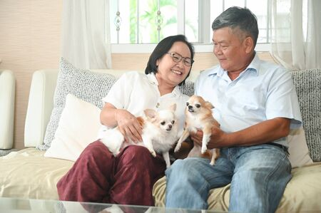 Elderly are sitting happily resting on the sofa with the dogs. Stock fotó