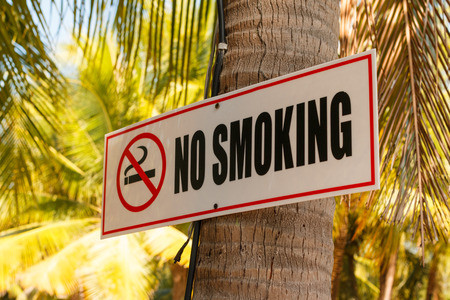 No smoking sign on a coconut tree photo