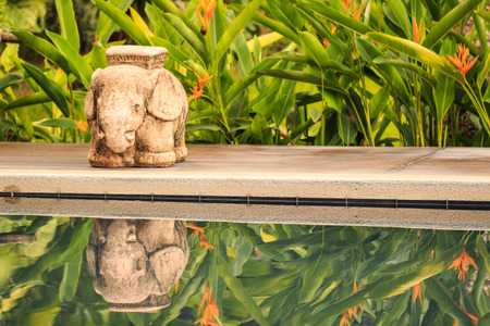 Elephant Statue and Shadow near  Luxurious swimming pool in a tropical garden, Thailand photo
