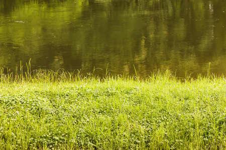 Grass on riverside Stock Photo