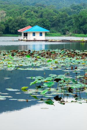 Lakeside cottage photo
