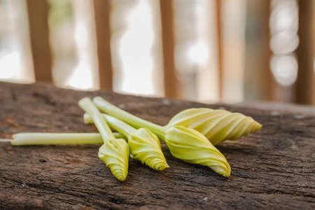 moonflower: Moonflower vegetables good herb on old wood