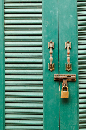 pawl: Metal bolts, latches and hooks in green wooden door