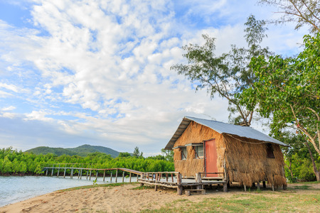 thatched cottage: thatched cottage and old bridge in mangrove forest