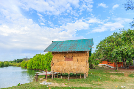 mangrove forest: thatched cottage in mangrove forest
