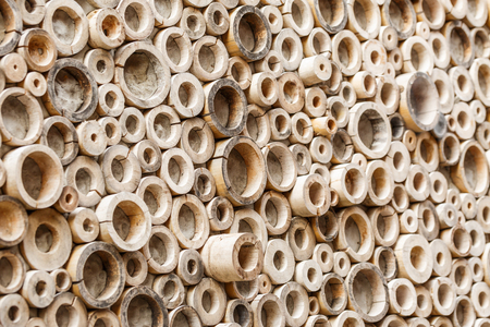 multiple ethnicities: Circle bamboo wall