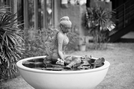 water plants: Thai style lady statue in big lotus pot