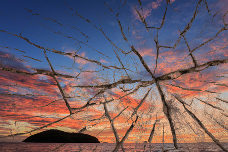 deteriorated: wood texture over view of sunset