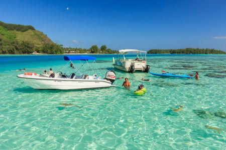 PAPEETE, POLYNÉSIE FRANÇAISE - 14 juin 2016: Les touristes de natation et d'alimentation des requins et des raies dans la belle mer à l'île Moorae, Tahiti PAPEETE, POLYNÉSIE FRANÇAISE le 14 Juin 2016 Éditoriale