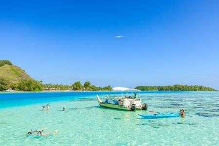 stingrays: PAPEETE, FRENCH POLYNESIA - JULY 16, 2016 : The Tourists swimming and feeding sharks and Stingrays in beautiful sea at Moorae Island, Tahiti PAPEETE, FRENCH POLYNESIA on July 16, 2016