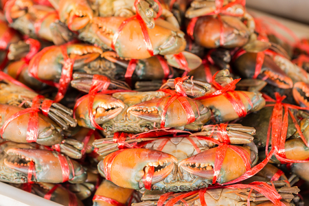 crabs in seafood markrt Stock Photo