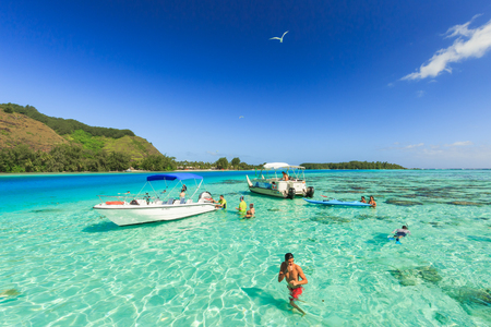 stingrays: PAPEETE, FRENCH POLYNESIA - DECEMBER 27 , 2016 : The Tourists swimming and feeding sharks and Stingrays in beautiful sea at Moorae Island, Tahiti PAPEETE, FRENCH POLYNESIA