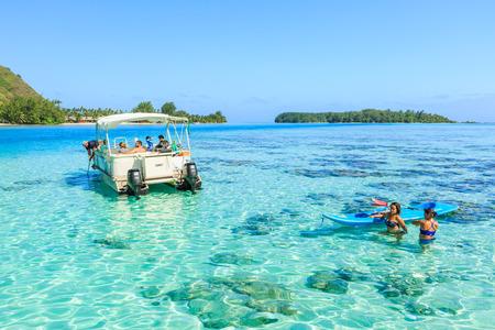 stingrays: PAPEETE, FRENCH POLYNESIA - DECEMBER 28, 2016 : The Tourists swimming and feeding sharks and Stingrays in beautiful sea at Moorae Island, Tahiti PAPEETE, FRENCH POLYNESIA