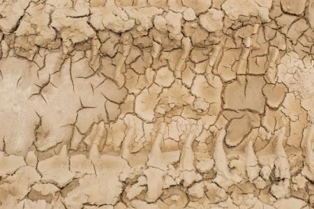 Wheel tracks on the soil photo