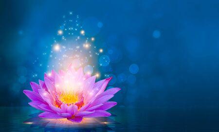 lotus rose violet clair flottant lumière étincelle fond violet