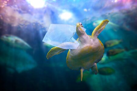 plastic ocean turtle are eating plastic bags under the blue sea. Environmental conservation concepts and not throwing garbage into the sea