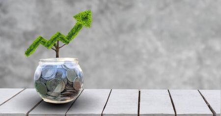 growth business. The tree grows into a shape, pointing up the concepts of financial business growth. Stok Fotoğraf