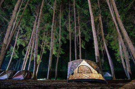 Dancing camping in Pang Ung forest, Mae Hong Son province, Thailand