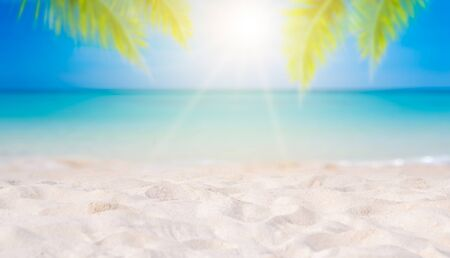 Summer vacation white sand beach with space for text coconut leaves rear frame sea view energetic floor 版權商用圖片 - 142346944