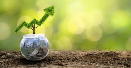 growth business. The tree grows into a shape, pointing up the concepts of financial business growth. 版權商用圖片 - 145116193