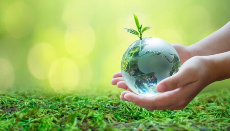 Adults are sending the world to babies. Concept day earth Save the world save environment The world is in the grass of the green bokeh background 版權商用圖片 - 145286236