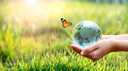Concept Save the world save environment The world is in the grass of the green bokeh background 版權商用圖片 - 147937196