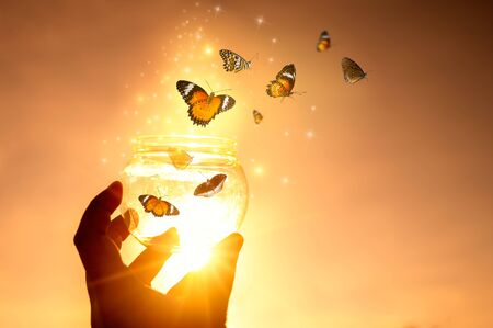 The girl frees the butterfly from the jar, golden blue moment Concept of freedom 版權商用圖片 - 149679403