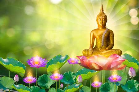 Buddha statue water lotus Buddha standing on lotus flower
