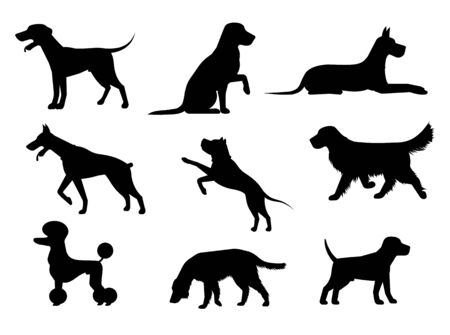 Dog icon. Vector illustration of a pet