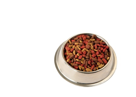 full bowl with pet food