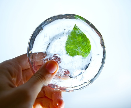 hand holding ice with green leaf in it
